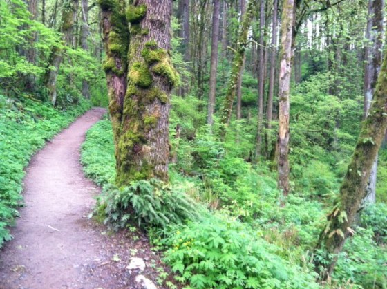 The Trails @ Forrest Park PDX